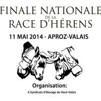 Finale Aproz 2014